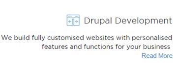 Drupal Development Icon